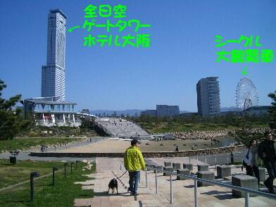 20090328_7