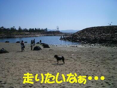 20090328_9