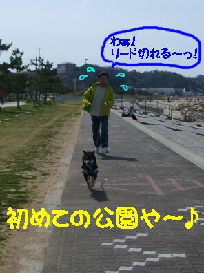 20090412_3_2