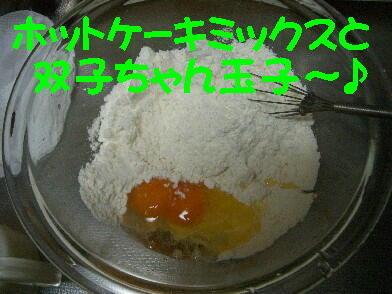 20090415_2