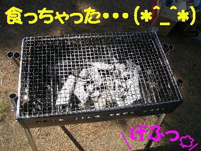 20090516_1_21