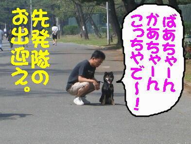 20090516_1_3