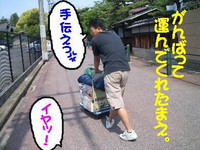 20090516_1_6
