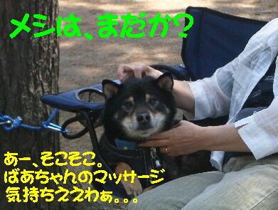 20090516_1_8