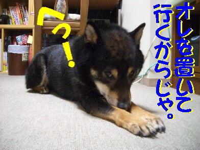 20090528_7