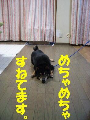 20090708_2