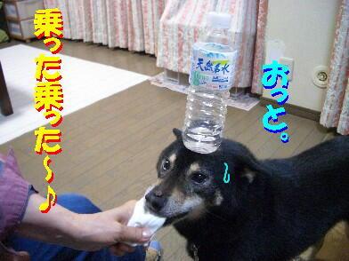 20090731_10