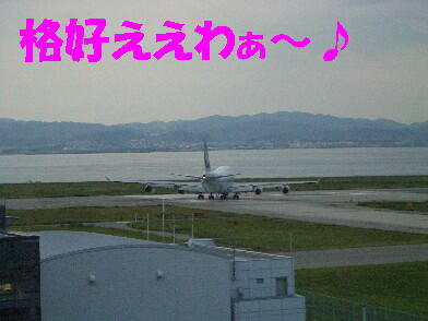 20090903_12