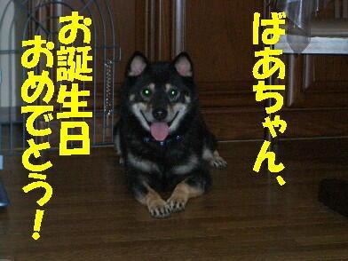 20090903_15