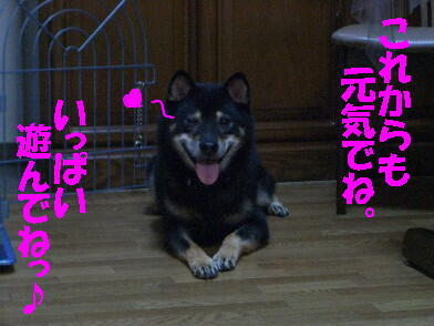 20090903_16