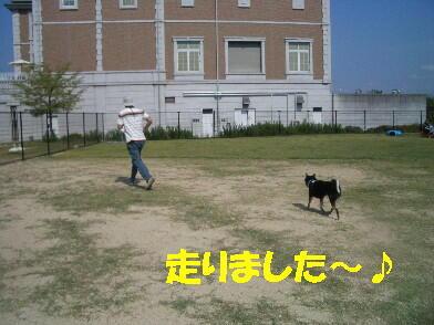 20091001_12_2