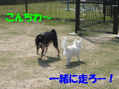 20091001_13