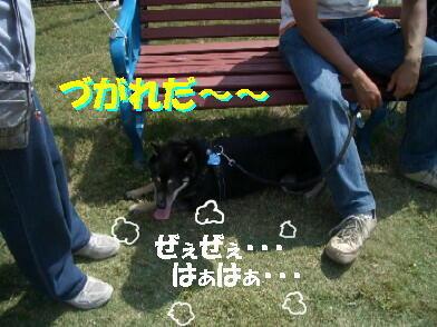 20091001_16