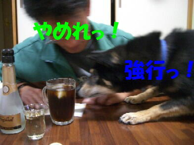 20091230_16_3