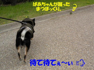 20100329_3_3