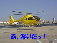 20100531_12