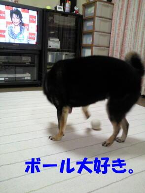 20100816_4