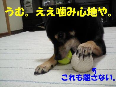 20100816_6