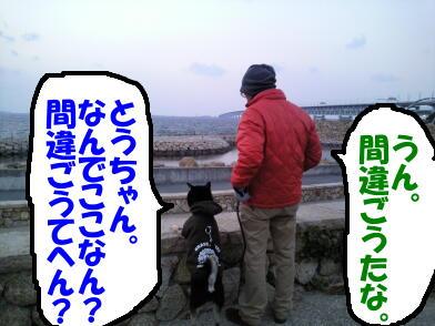 20110127_8