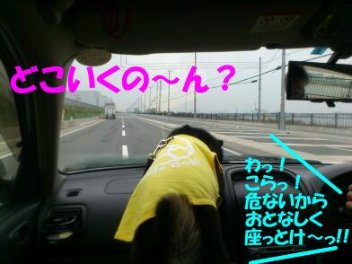 20120509_1
