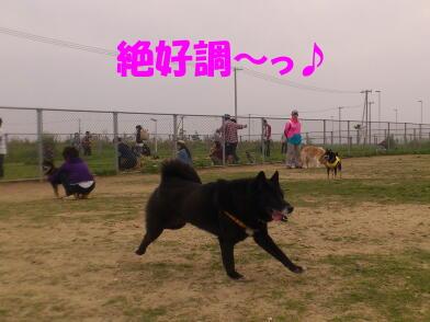20120509_4_2