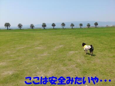 20120514_4