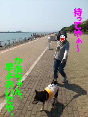 20120514_6