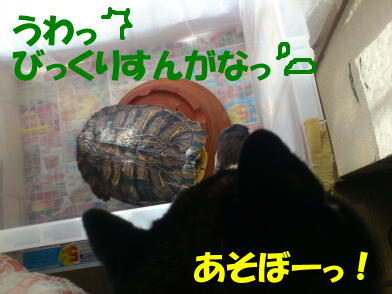 20120911_6