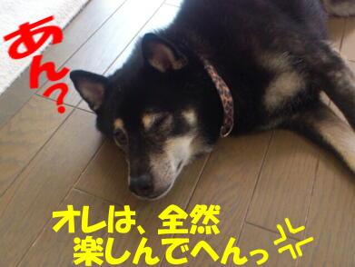 20120920_17_2