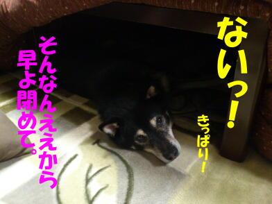 20121115_4