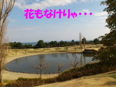 20130314_15_2