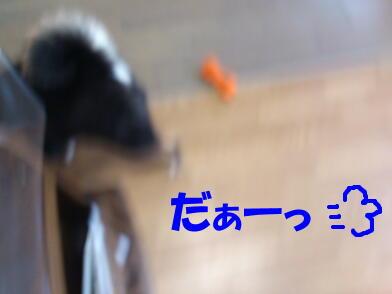 20130411_6_2