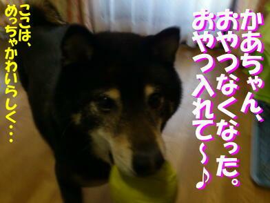 20130411_7_2
