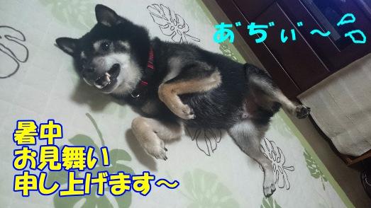 20140719_1_3
